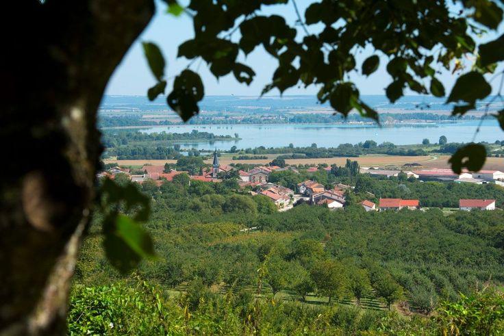 Au pied des Côtes de #Meuse et en plein cœur du Parc Naturel Régional de Lorraine : le Lac de Madine est une réserve nationale de chasse et de #Faune sauvage et une zone de loisirs et d' #Activités. Alors inutile d'aller très loin pour se ressourcer en amoureux, en #Famille ou entre amis, c'est un lieu idéal pour se divertir et se détendre ! Au sommet de la butte de #Montsec, vous admirerez ce lac paisible, entre deux vallées, au cœur de la plaine de la Woëvre. Crédit photo : Guillaume RAMON