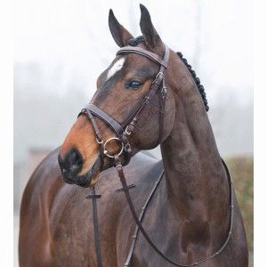 Bridon Venice Horze - sellerie en ligne www.laboutiqueducheval.com - filet cheval en cuir de qualité
