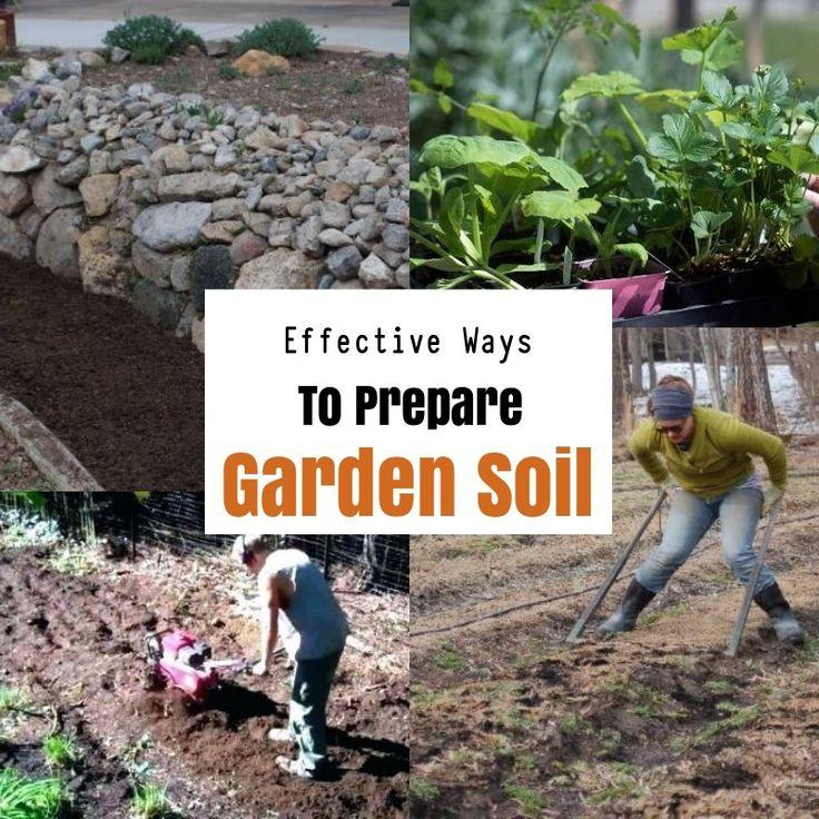 How To Prepare Soil For Gardening?
