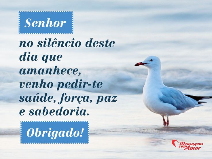 Frases And Bom Dia