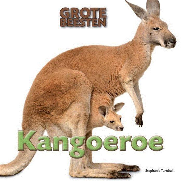 Kangoeroe  Grote beesten zijn spannend. Bijvoorbeeld kangoeroes. Want die zijn reusachtig! De grootste kangoeroes zijn groter dan een volwassen mens. Ze gebruiken hun sterke achterpoten en grote voeten om reuzensprongen te maken. Kangoeroes kunnen lange afstanden afleggen zonder moe te worden. Waar en hoe leven kangoeroes? En hoe brengen ze hun jongen groot?  EUR 8.00  Meer informatie  http://ift.tt/2rjscUQ #ebook