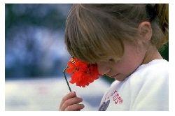What is Obsessive-Compulsive Disorder (OCD) in Children?