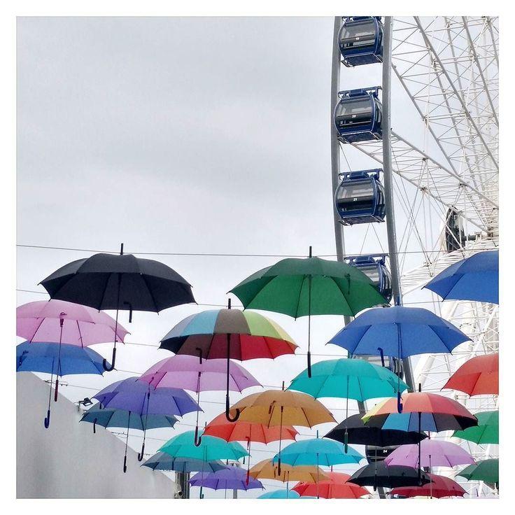 Hej I po SeeBloggersa teraz wieczorne zwiedzanie Gdyni a jak tam u Was ?  #gdynia #trojmiasto #zwiedzanie #parasolki