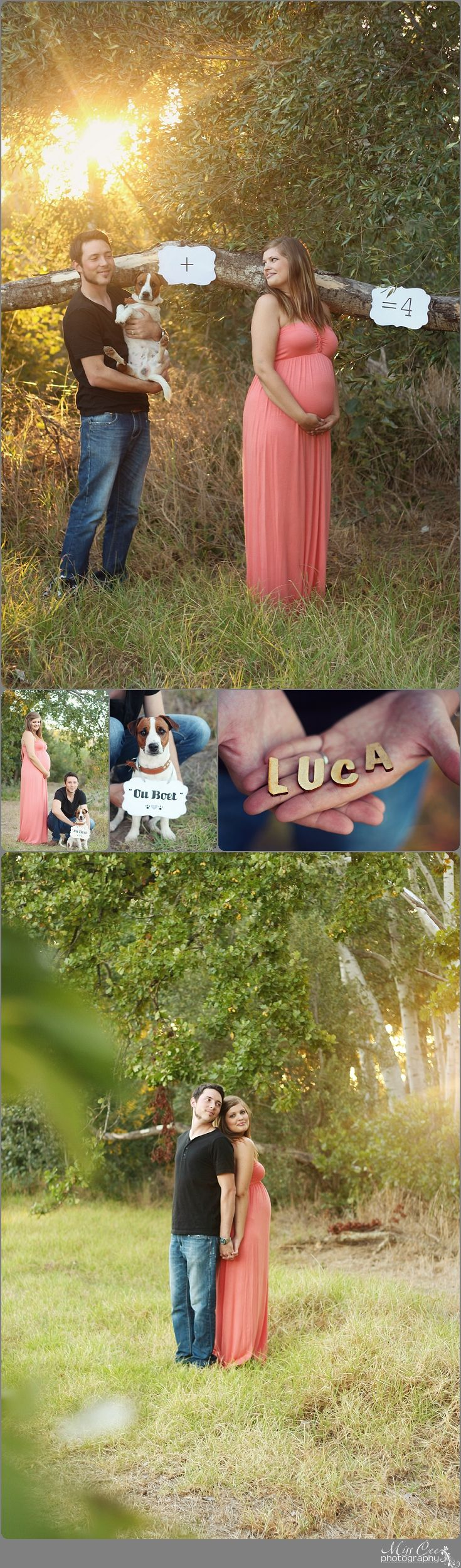 Maternity Shoot , Props for maternity shoot , Mommy to be , dog in maternity shoot , Big Brother to be