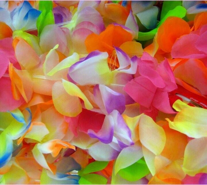 Pretty sweetpea flowers