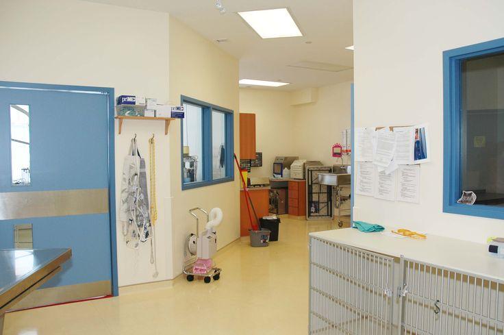 Surgical Suites Prep Area