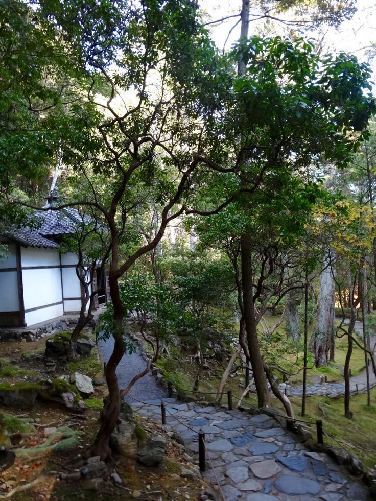 https://flic.kr/p/yr6ERf | Kyoto Kokedera Saihoji Temple de mousses