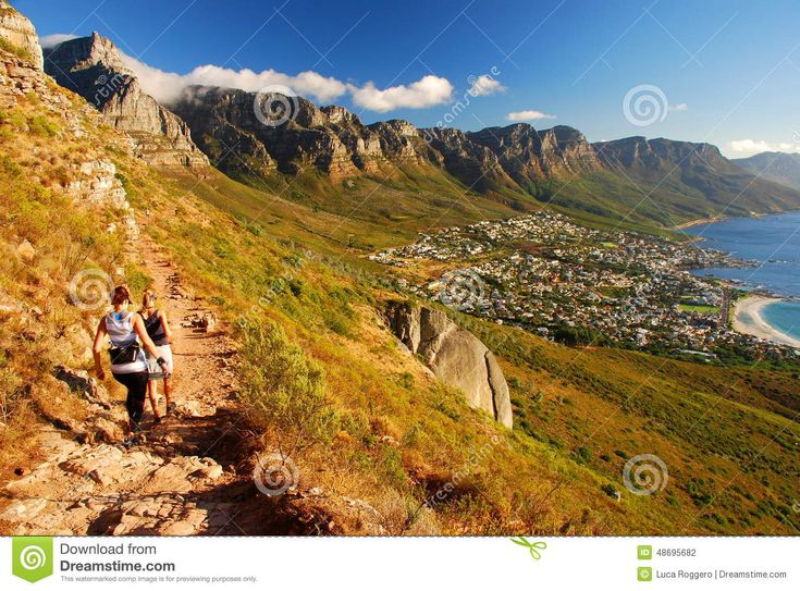 trekking-table-mountain-national-park-cape-town-western-cape-south-africa-previously-known-as-peninsula-48695682.jpg (1300×960)