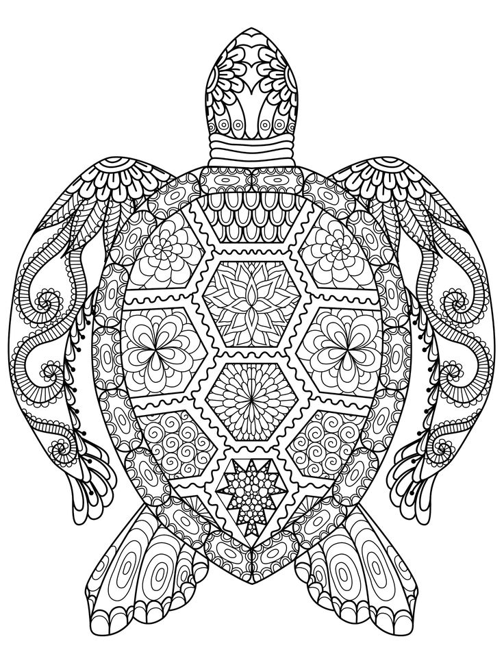 Adult zentangle zen turtle coloring pages printable and coloring book to print for free find more coloring pages online for kids and adults of adult