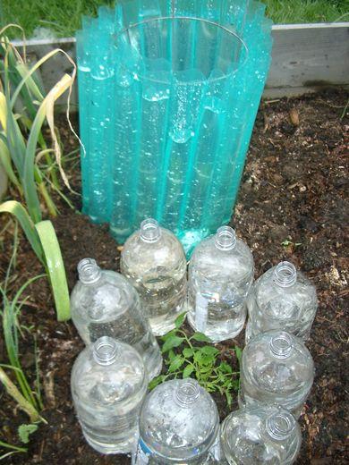 Diy Tomato Nursery The Water Wall Garden Garden