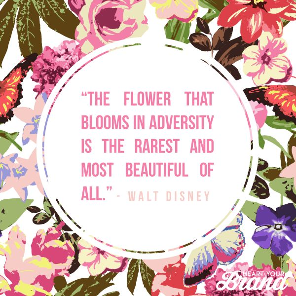 """""""The flower that blooms in adversity is the rarest and most beautiful of all"""" - Walt Disney"""