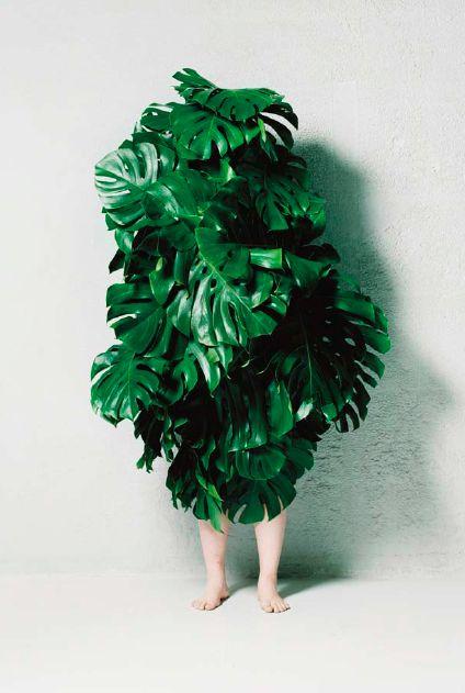 Makoto azuma, leaf man (2008)