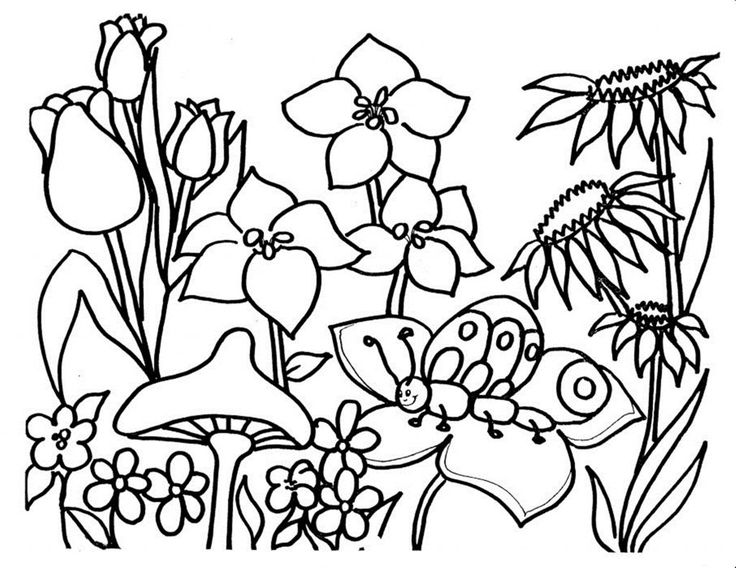 Tropical Flower Coloring Pages Coloring Coloring Pages