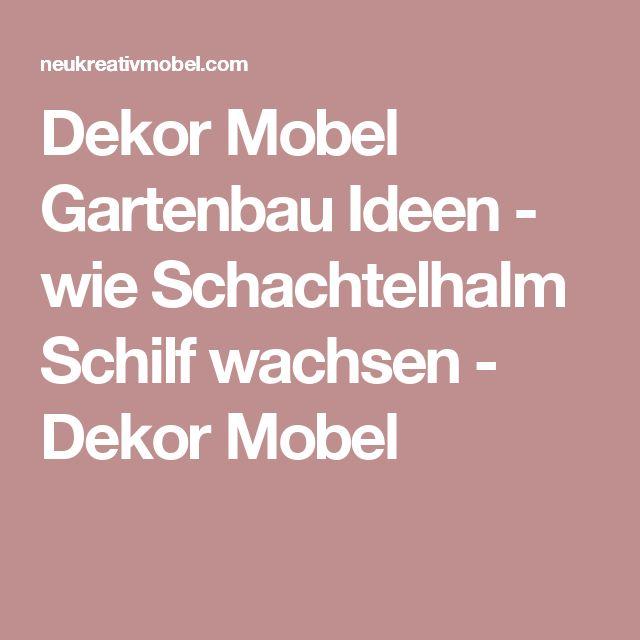 ... Mobel Gartenbau Ideen - wie Schachtelhalm Schilf wachsen - Dekor Mobel