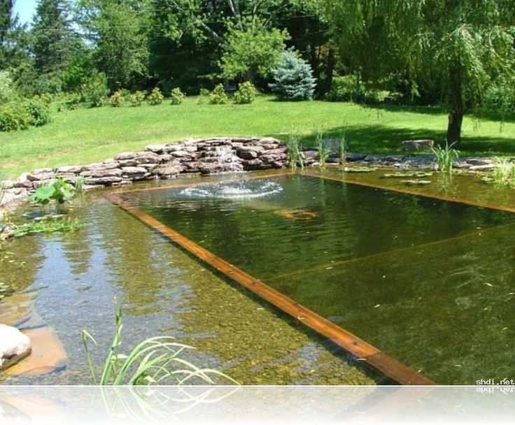 17 best images about swimming pond on pinterest swim for Koi pond natural swimming pool