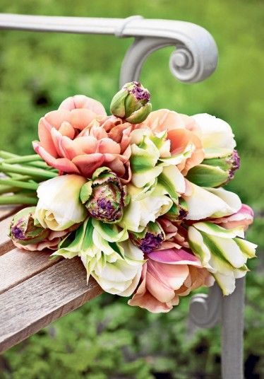 'Françoise', 'La Belle Epoque' (a new favourite shade), 'Greenstar' and the bizarre artichoke tulip 'Purple Tower' make a beautiful hand-tied bunch. ~Sarah Raven