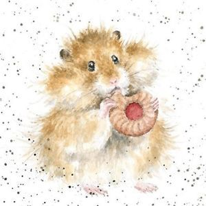 New Wrendale cards now at Country Cottage Gifts