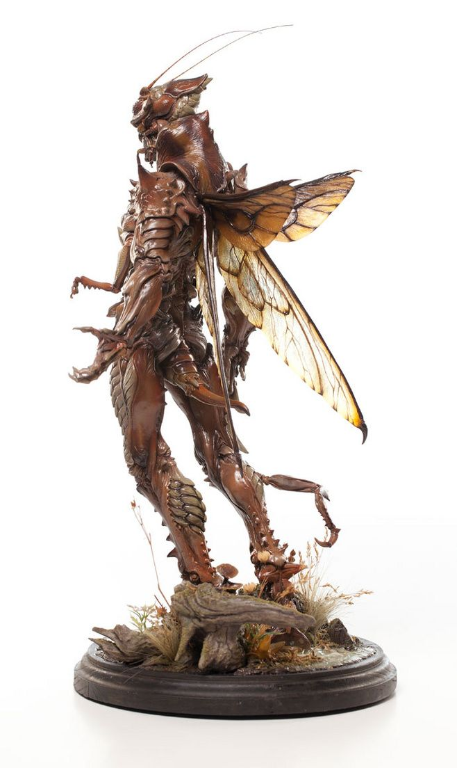 insectoid, back
