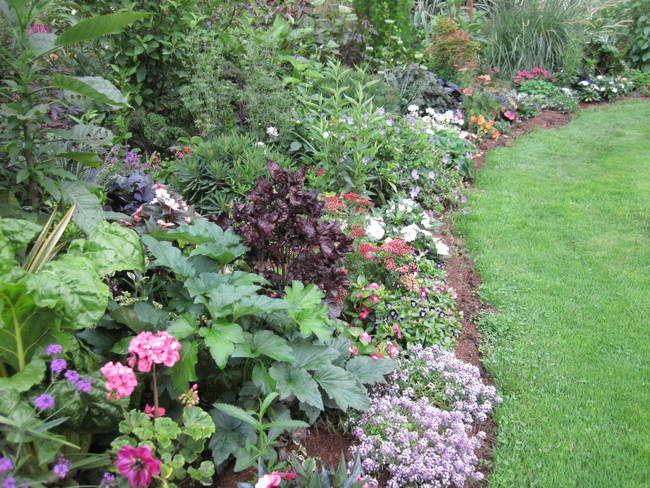 Les 25 meilleures id es de la cat gorie jardin h m rocalle for Catalogue plantes jardin
