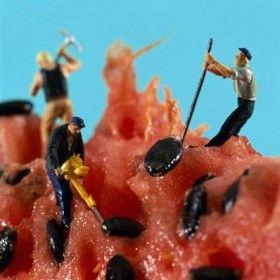 Creative Food ArtWork Hard, Miniatures, Little People, Akiko%, Minis, Watermelon, Art Pictures, Foodart, Food Art