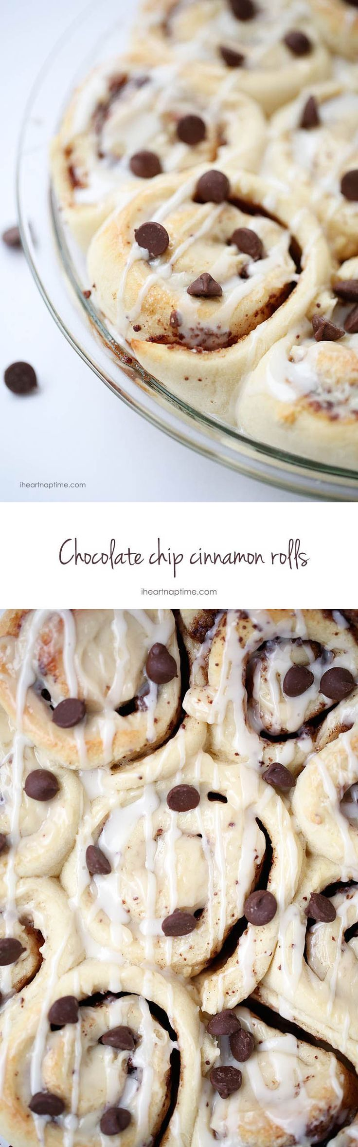Chocolate Cinnamon Rolls on iheartnaptime.com -all the goodness of cinnamon rolls filled with delicious bits of chocolate chips in every bite!