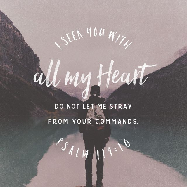 """""""With my whole heart have I sought thee: O let me not wander from thy commandments."""" Psalms 119:10 KJV"""