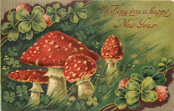 Мухомор открытка, именинами