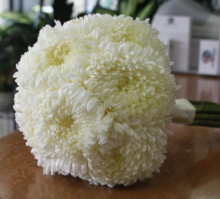 Best 25+ Chrysanthemum bridesmaid bouquet ideas on ...