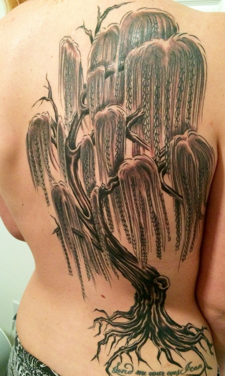 25 best tree tattoos images on pinterest tattoo ideas for Willow tree tattoo
