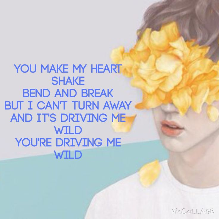 Troye Sivan- Blue neighbourhood- WILD