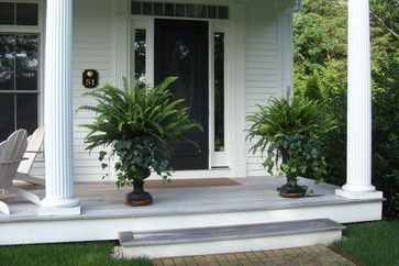 Ferns in urns. Classic urns give potted plants added height and an elegant presence. These arrangements of ferns with English ivy flowing down at the base stand up to the scale of the entryway.