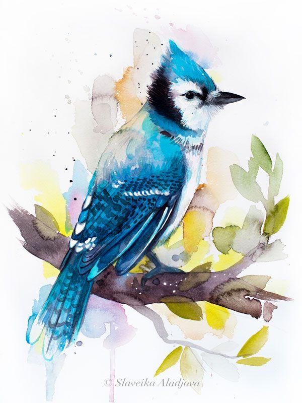 Blue Jay Watercolor Painting Print By Slaveika Aladjova Art