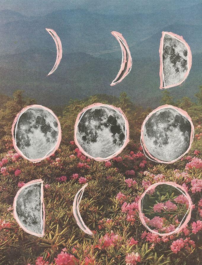 moon and flowers  taking time to see the roses  Enjoy Eventos Chajarí Entre Ríos  Organización de Eventos  http://www.enjoyeventos.com.ar
