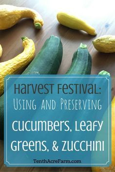 the hottest topic of late summer for any gardener is how to manage the abundance of - How To Freeze Cucumbers