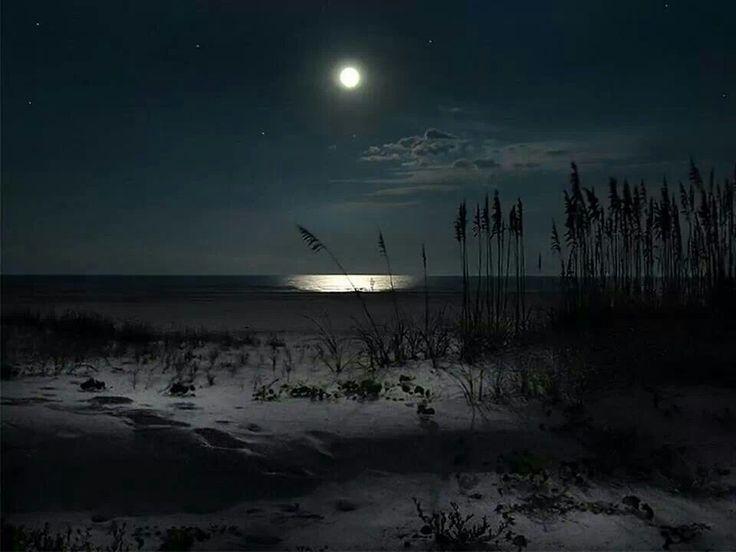 St Augustine Florida Night