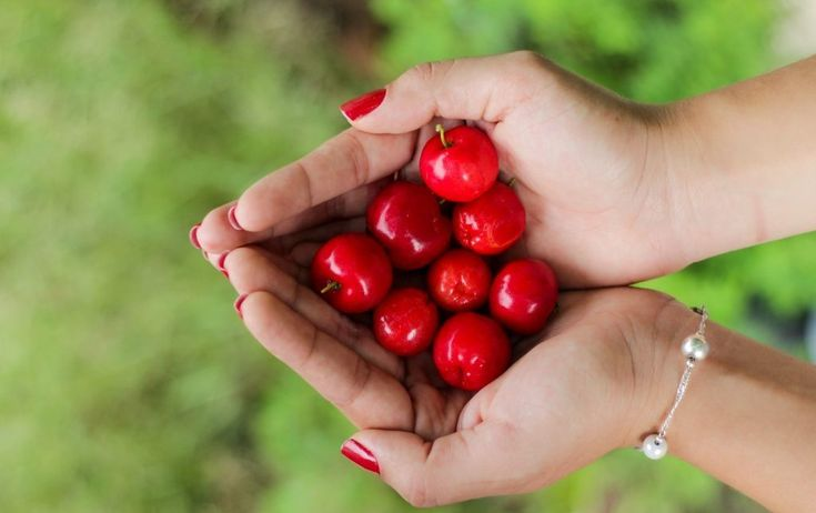 we have cherry-picked the best life insurance quotes providers in the USA here to help you find the cheapest rates from the best life insurance companies.