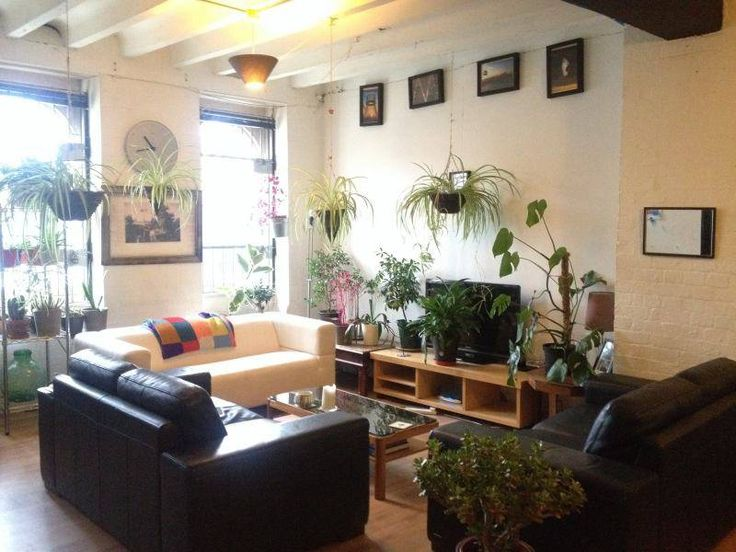 'Single room in spacious flatshare' Room to Rent from SpareRoom