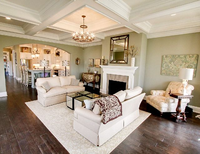 Gorgeous.Wall Colors, Living Rooms, Living Spaces, Green Wall, Open Floors Plans, Living Room Layout, Sitting Room, Painting Colors, Families Room