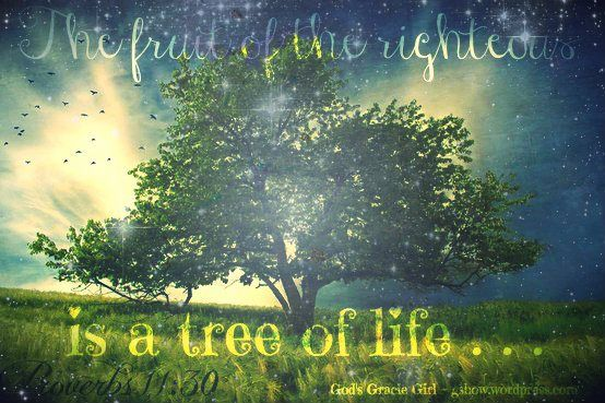 The Tree Of Life Part 3 And More Inspirational