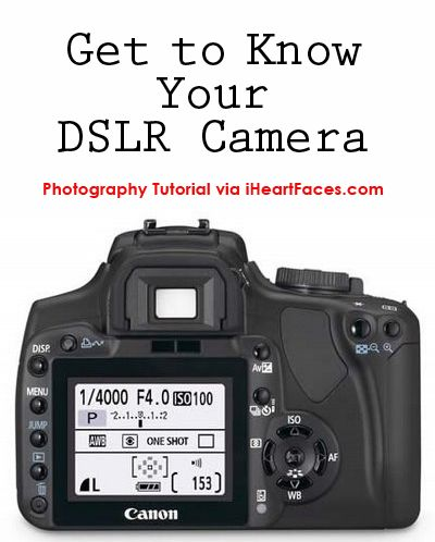 Learn About Your DSLR Camera