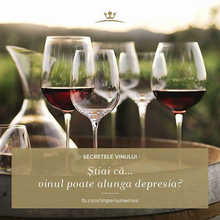 Știai că un studiu efectuat în Spania a arătat, prin dovezi statistice, că un consum echilibrat de vin te face mai puțin vulnerabil la depresie? Să ciocnim, deci, câte un pahar cu vin la fiecare 2-3 zile!