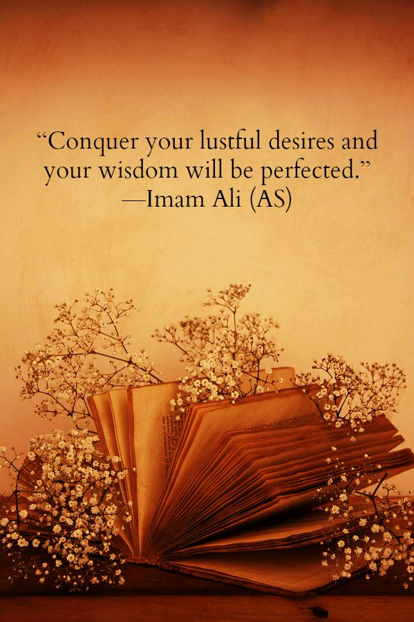 Conquer your lustful desires and your wisdom will be perfected. -Hazrat Ali (a.s)