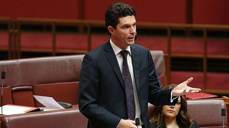 Australian Greens politician Scott Ludlam resigns after discovering his dual nationality.