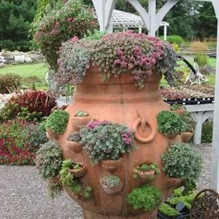 Large Terracotta Strawberry Pot Overflowing With