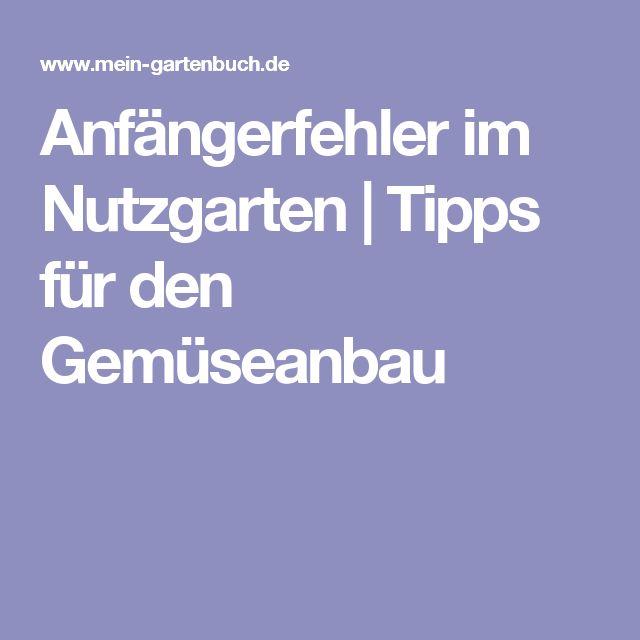 Anfängerfehler im Nutzgarten | Tipps für den Gemüseanbau