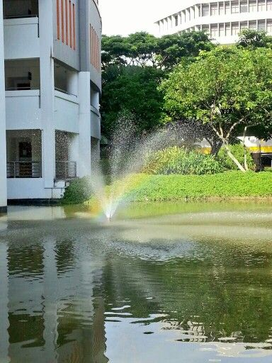 Is the pot of gold buried in the pond?  -NP