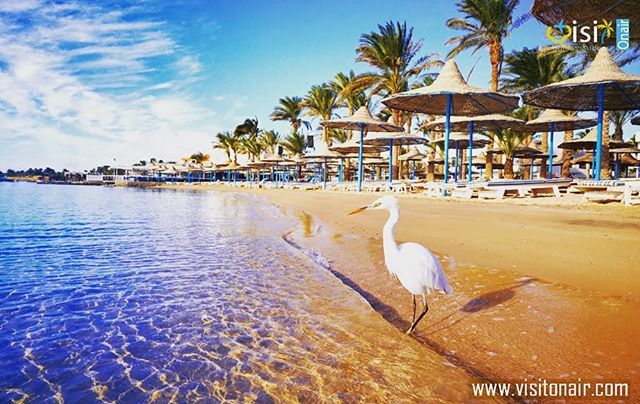 Beaches In Hurghada Travel Visit Vacationmoden Vacationt Trip Holiday Sea Hurghada Summer Summertime Beach Hurghada Summer Travel Tourist