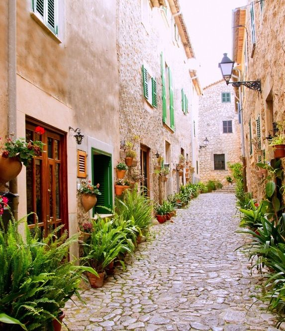 Take time to stroll the cobblestone streets of Palma De Mallorca, Spain.Majorca Valldemossa, Valldemossa Typical, Favorite Places, Mallorca Valldemossa, Valldemossa Village, Flower Pots, Mallorca, Typical Village, Spain