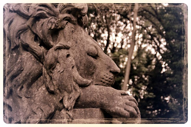 Nero the Lion, Highgate Cemetery - West