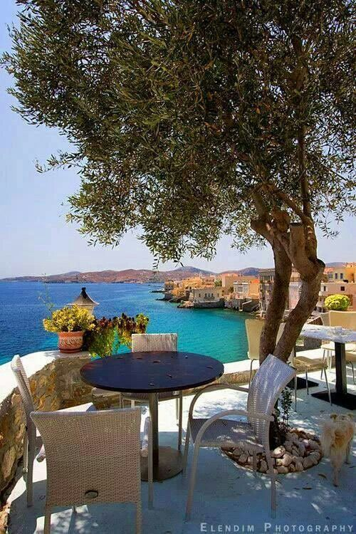 Viewing the sea of Syros island, under the olive tree ~ Greece